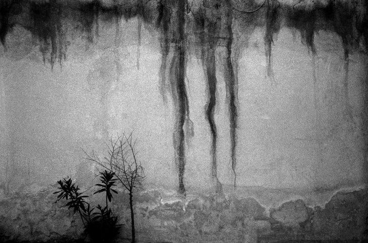 Joubeen mireskandari - dastan basement gallery - contemporary photography - iranaian photographer - analogue photography - Michket Krifa - Behzad hatam