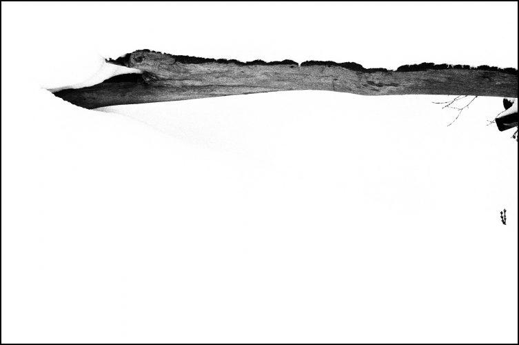 ilfordfilm - ilford paper - joubeen mireskandari - ab anbar gallery - artistic photography - contemporary photographer - classic photography - b&w photography - iranian contemporary photographer